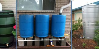 Basic Rainwater Harvesting Components