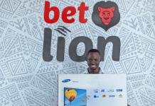 Bet Lion