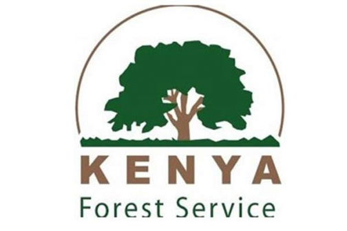 The Kenya Forestry Service (KFS) logo.