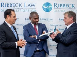 Ethiopian Airlines Flight 302 - Ribeck Law